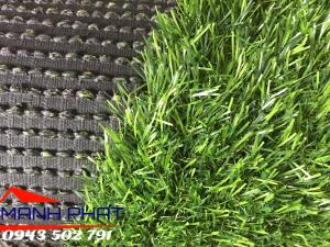 Cỏ thảm trải sàn T25