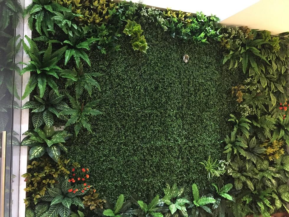 cỏ nhựa trang trí tường