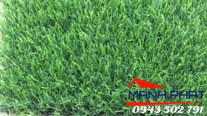 Thảm cỏ nhân tạo trải sàn T2