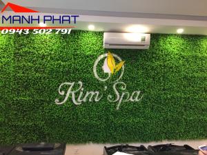 Cỏ nhựa trang trí spa tại Hà Nội