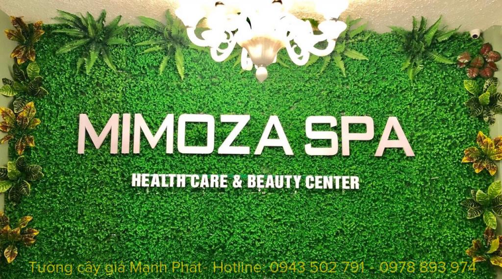 Tường cỏ nhựa kết hợp điểm cây trang trí